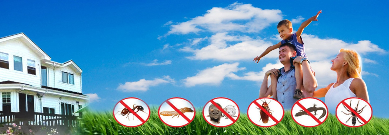 Bird Pest Control Gandhinagar